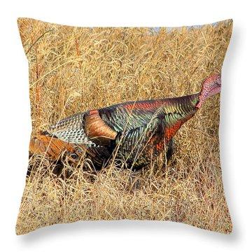 Rainbow Turkey Throw Pillow