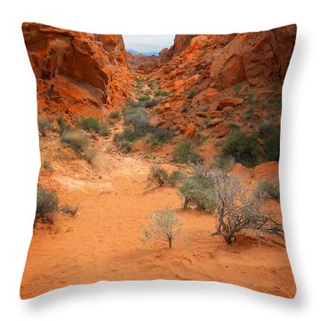Rainbow Vista Trail Valley Of Fire Throw Pillow by Frank Wilson