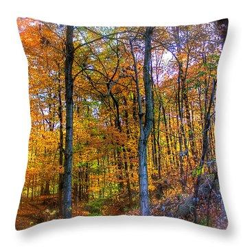Rainbow Woods Throw Pillow