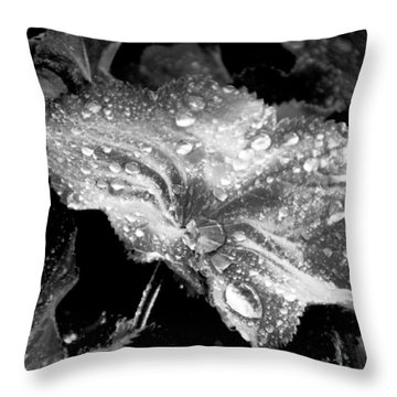 Raindrop Covered Leaf Throw Pillow