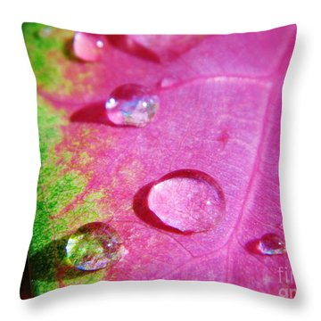 Raindrop On The Leaf Throw Pillow