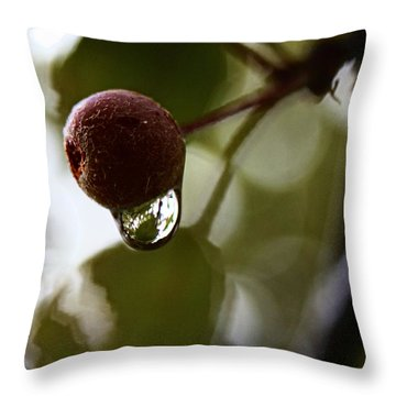 Raindrop Reflection 1 Throw Pillow