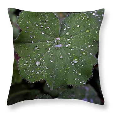 Throw Pillow featuring the photograph Raindrops 2 by Henry Kowalski