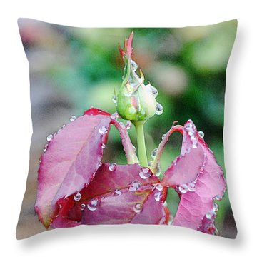 Raindrops And Rosebud 1 Throw Pillow