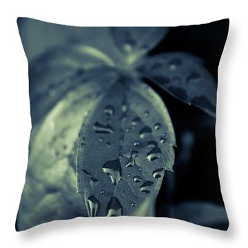 Raindrops Throw Pillow by Andreas Levi