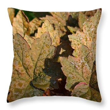 Throw Pillow featuring the photograph Raindrops by Henry Kowalski