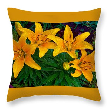 Raindrops Throw Pillow by Julie Grace