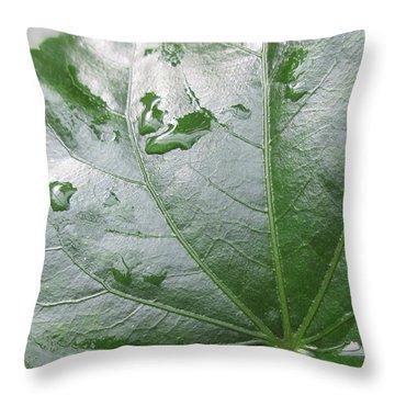 Raindrops Keep Falling... Throw Pillow