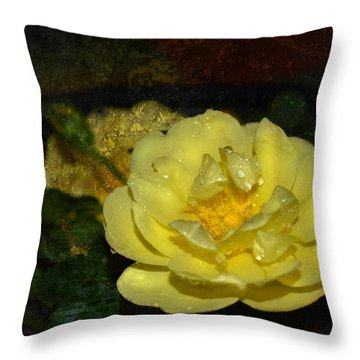 Raindrops Kept Falling Throw Pillow by Lena Wilhite