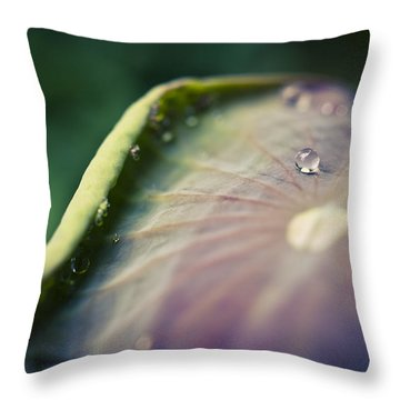 Raindrops On A Lotus Leaf Throw Pillow by Priya Ghose