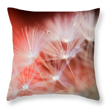 Raindrops On Dandelion Red Throw Pillow