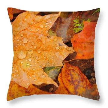 Raindrops On Fallen Maple Leaf Throw Pillow