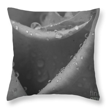 Throw Pillow featuring the photograph Raindrops On Rose 2 by Inge Riis McDonald