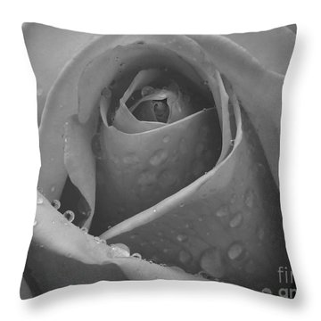 Throw Pillow featuring the photograph Raindrops On Rose by Inge Riis McDonald