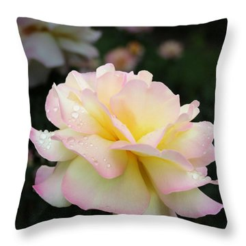 Throw Pillow featuring the photograph Raindrops On Rose Petals by Barbara McMahon