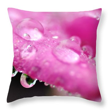 Raindrops On Roses Throw Pillow by Kaye Menner