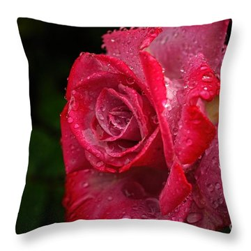 Raindrops On Roses Throw Pillow by Peggy Hughes