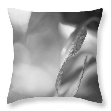 Raindrops Two Throw Pillow by Bob Orsillo