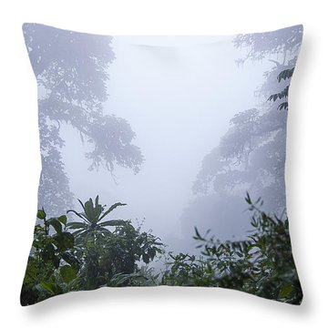 Kigali Throw Pillows