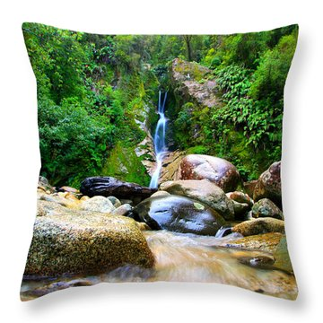 Throw Pillow featuring the photograph Rainforest Stream New Zealand by Amanda Stadther