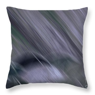 Rainy By Jrr Throw Pillow by First Star Art