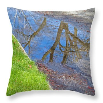 Rainy Day Aftermath Throw Pillow by Ann Horn