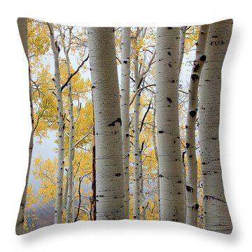 Rainy Day Aspen  Throw Pillow