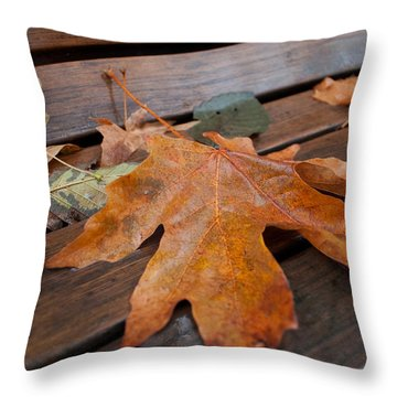 Rainy Day Bench Throw Pillow by Gwyn Newcombe