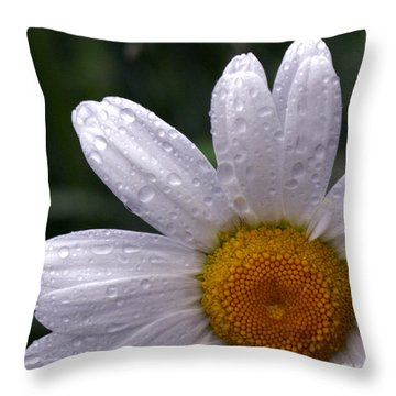 Rainy Day Daisy Throw Pillow