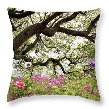 Rainy Day In Montreux Throw Pillow by Colleen Williams