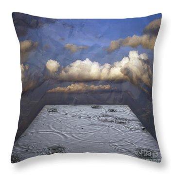 Rainy Day Throw Pillow by Michal Boubin