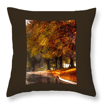 Throw Pillow featuring the photograph Rainy Day Path by Lesa Fine