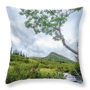 Rainy Evening On A Mountain Stream Throw Pillow