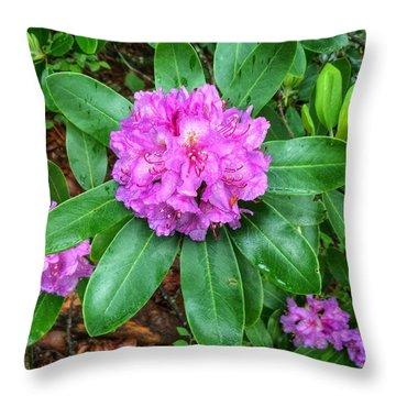 Rainy Rhodo Throw Pillow