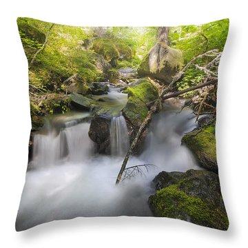 Ramona Creek Throw Pillow by David Gn