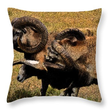Throw Pillow featuring the photograph Rams At Half-time by Doc Braham