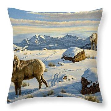 Bighorn Sheep Throw Pillows