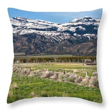 Ranching In Modoc Throw Pillow by Kathleen Bishop