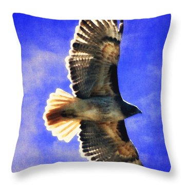 Raptor In Flight Throw Pillow by Timothy Bulone