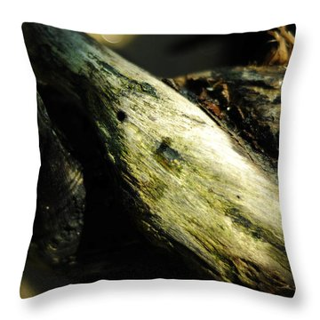 Rapture On The Lonely Shore Throw Pillow by Rebecca Sherman