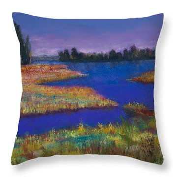 Raquette Lake Throw Pillow by David Patterson