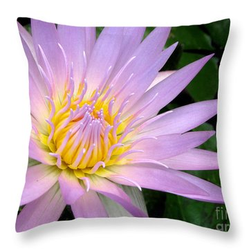 Rare Beauty Throw Pillow