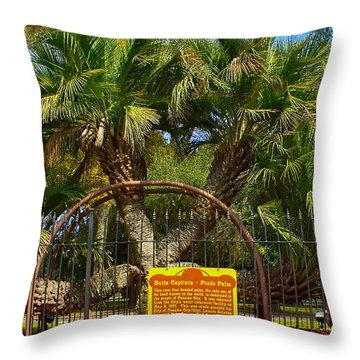 Rare Palm Tree Throw Pillow