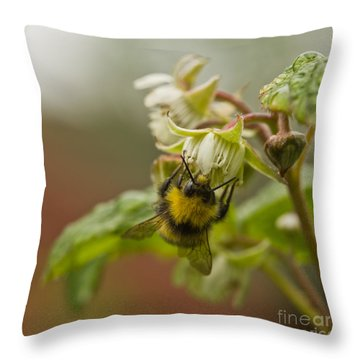 Raspberries And Honey Throw Pillow
