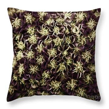 Throw Pillow featuring the photograph Raspberry Circles by Jean OKeeffe Macro Abundance Art