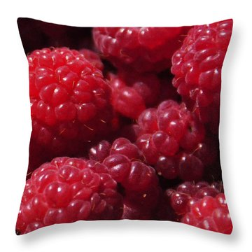 Raspberry Crave Throw Pillow by Elena Hasnas