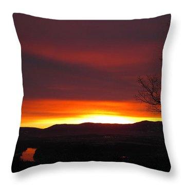 Throw Pillow featuring the photograph Raspberry Swirl by Lara Ellis