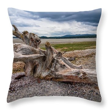 Rathtrevor Beach Stump Throw Pillow by James Wheeler