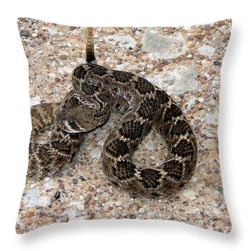 Throw Pillow featuring the photograph Rattler by Linda Cox