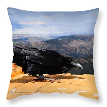 Raven Bryce Canyon Throw Pillow by Donald Fink